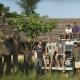 'Mahout – The Great Elephant Walk': Big steps for humans and elephants alike